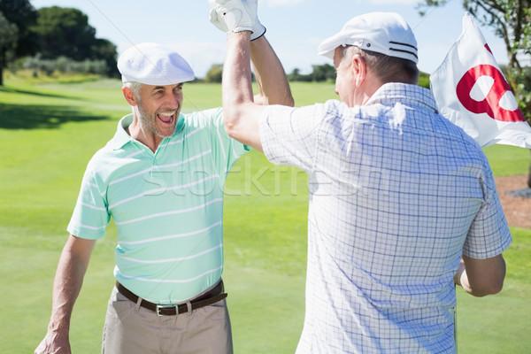 Golfe amigos alto buraco campo de golfe Foto stock © wavebreak_media
