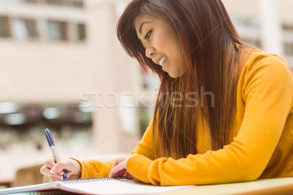 Zdjęcia stock: Kobiet · praca · domowa · młodych · zewnątrz · stołówka