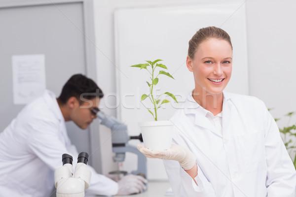 Happy scientist smiling at camera showing plant  Stock photo © wavebreak_media