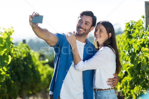 Happy young couple taking selfie at vineyard Stock photo © wavebreak_media