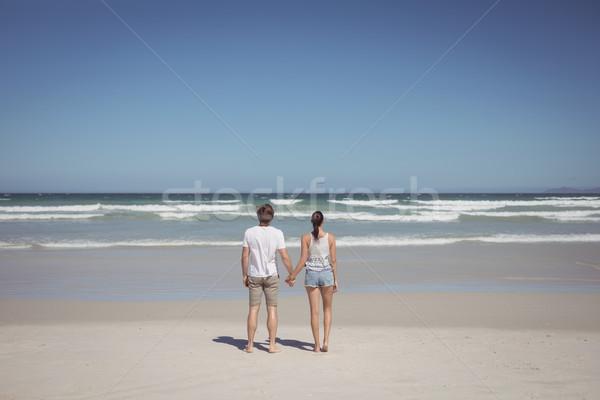背面図 カップル 手をつない ビーチ 空 ストックフォト © wavebreak_media