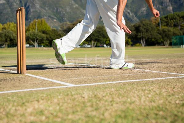 Düşük bölüm oyuncu ayakta kriket alan Stok fotoğraf © wavebreak_media