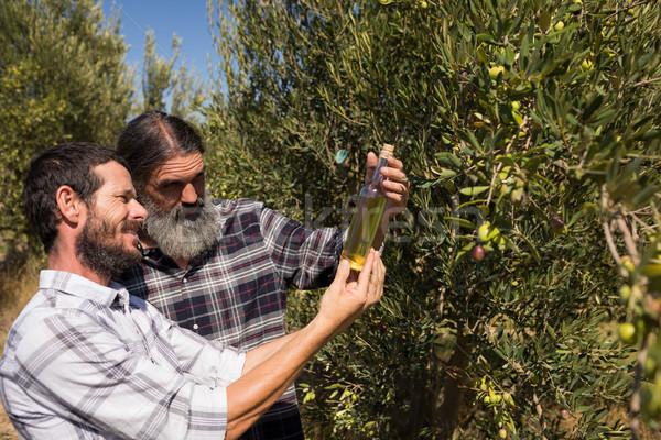 Friends examining olive oil in farm Stock photo © wavebreak_media
