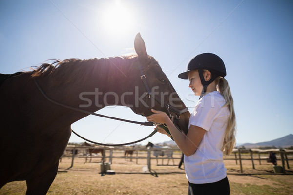 Rider girl caressing a horse in the ranch Stock photo © wavebreak_media