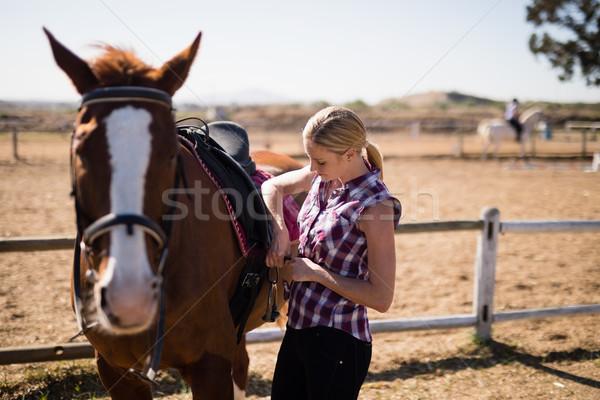 ストックフォト: 若い女性 · サドル · 馬 · 立って · フィールド