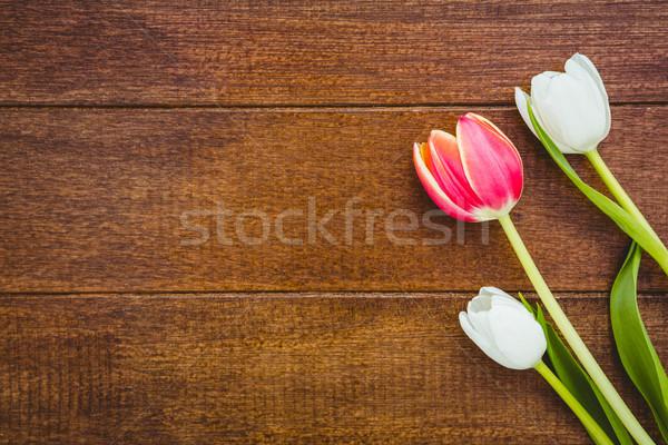Poco rojo flores blancas madera escritorio flor Foto stock © wavebreak_media