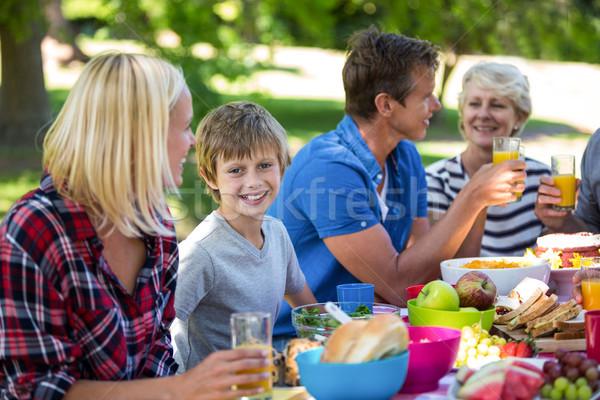 Family having a picnic Stock photo © wavebreak_media