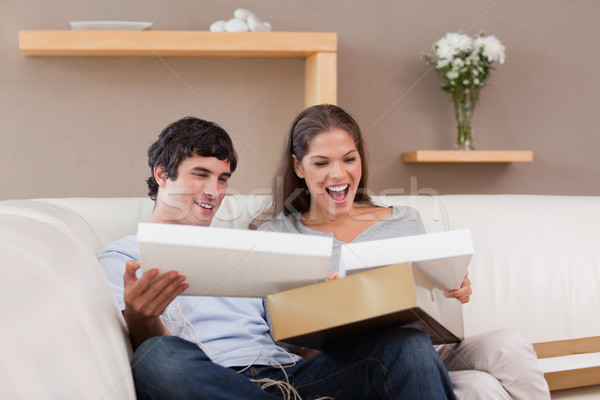 Young couple on the couch opening parcel Stock photo © wavebreak_media