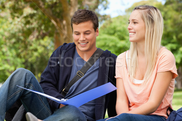 Smiling tutor helping a teenager to revise in a park Stock photo © wavebreak_media