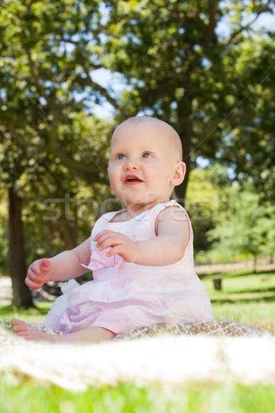 Cute baby posiedzenia koc parku Zdjęcia stock © wavebreak_media