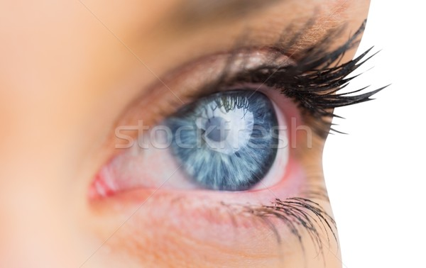 Close up of female blue eye Stock photo © wavebreak_media