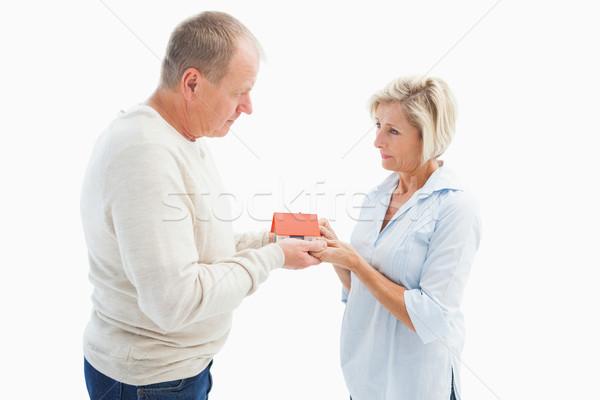 Serious mature couple with model house Stock photo © wavebreak_media