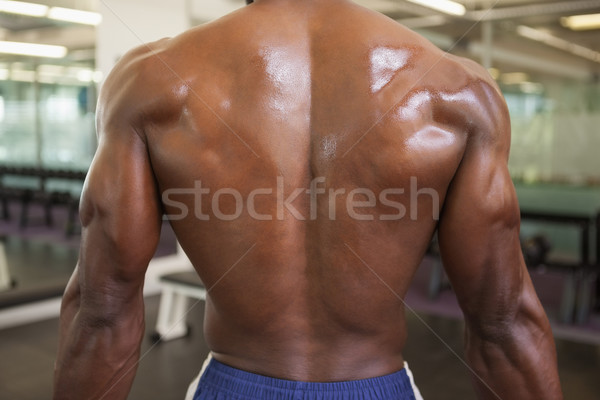 Rear view of a shirtless bodybuilder Stock photo © wavebreak_media