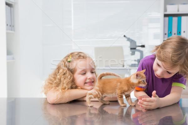 улыбаясь кошки медицинской служба девушки Сток-фото © wavebreak_media