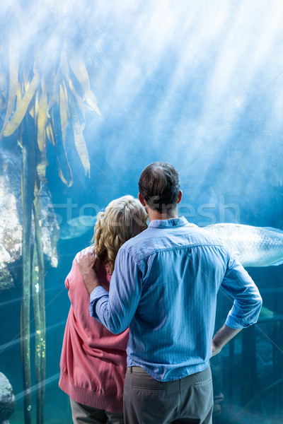 Desgaste ver casal olhando peixe tanque Foto stock © wavebreak_media