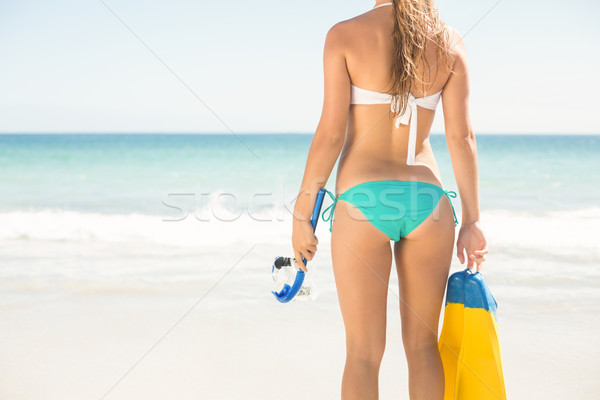 Wear view oh woman holding mask, scuba and fins  Stock photo © wavebreak_media