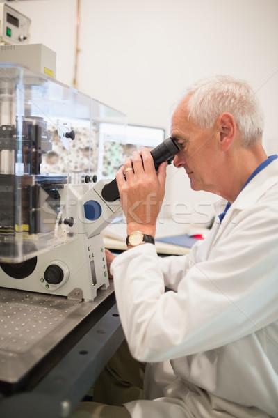 Nagy mikroszkóp számítógép egyetem férfi orvosi Stock fotó © wavebreak_media