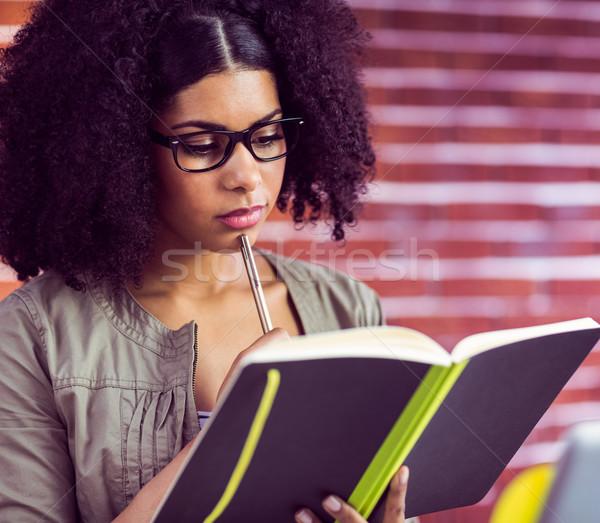 Lezser üzletasszony néz napló iroda olvas Stock fotó © wavebreak_media