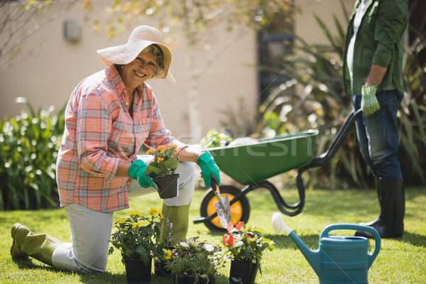 Portrait of smiling senior woman holding plant while kneeling in yard Stock photo © wavebreak_media