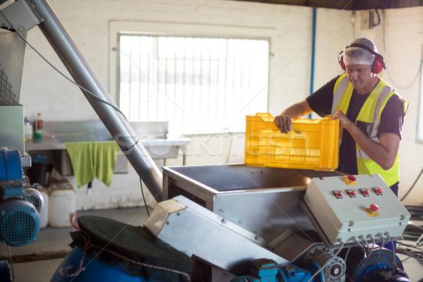 Trabajador aceitunas máquina fábrica negocios hombre Foto stock © wavebreak_media