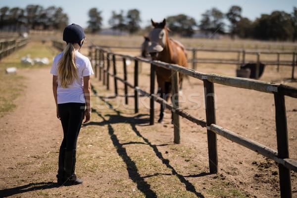 Nina mirando marrón poni rancho Foto stock © wavebreak_media