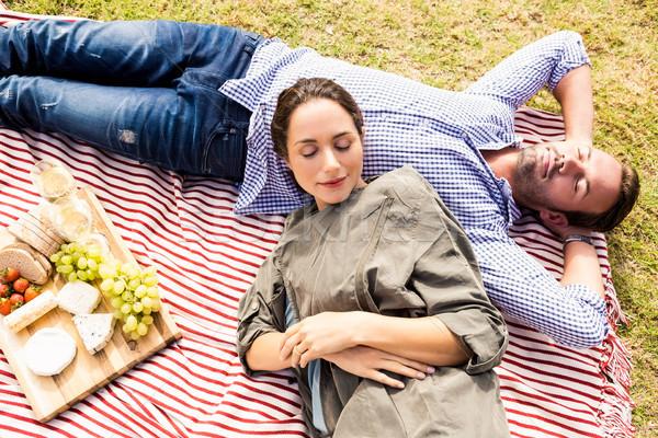 мнение пару спальный пикник одеяло Сток-фото © wavebreak_media