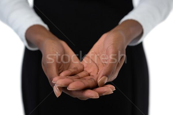 Zakenvrouw iets handen permanente Stockfoto © wavebreak_media