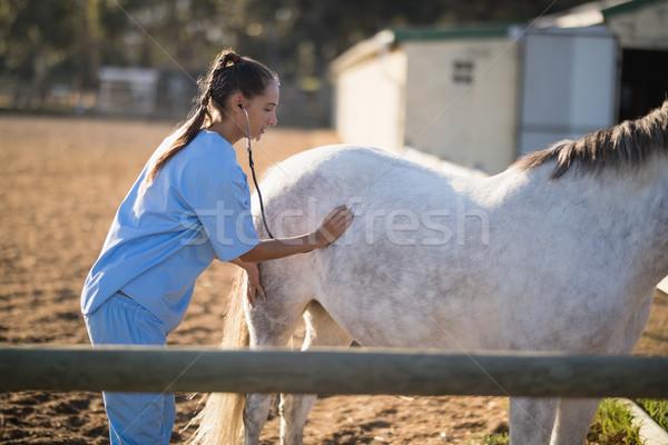 Side view of female vet examining horse with stethoscope Stock photo © wavebreak_media