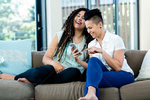 лесбиянок пару глядя мобильного телефона улыбаясь гостиной Сток-фото © wavebreak_media