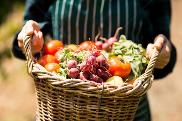 женщины фермер корзины овощей Сток-фото © wavebreak_media