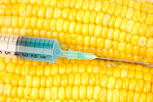 Azul líquido seringa milho branco medicina Foto stock © wavebreak_media