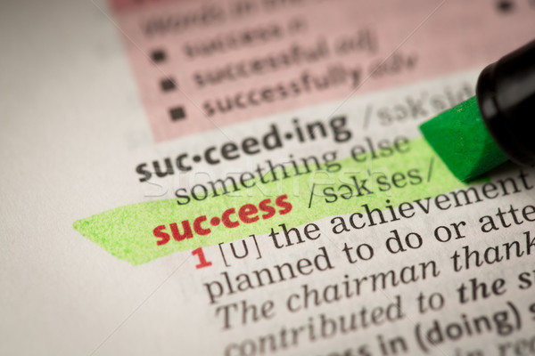 Başarı tanım yeşil sözlük bilgi eğitim Stok fotoğraf © wavebreak_media