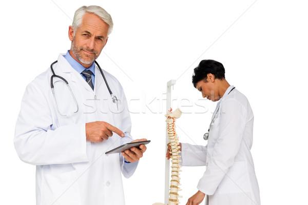 Orvos tart digitális asztal kolléga csontváz Stock fotó © wavebreak_media