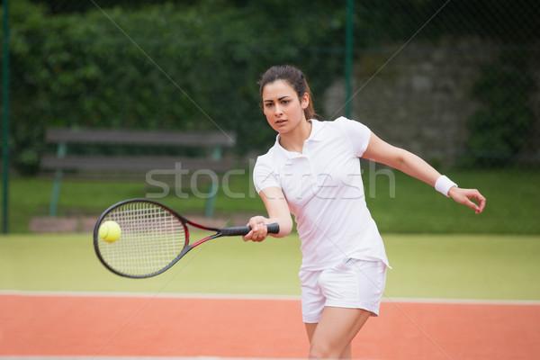 Jogar tribunal esportes fitness Foto stock © wavebreak_media