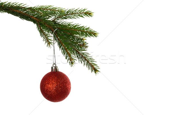 красный Рождества безделушка подвесной филиала белый Сток-фото © wavebreak_media