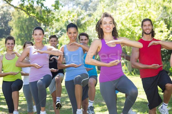 Fitnessz csoport tai chi park napos idő nő Stock fotó © wavebreak_media