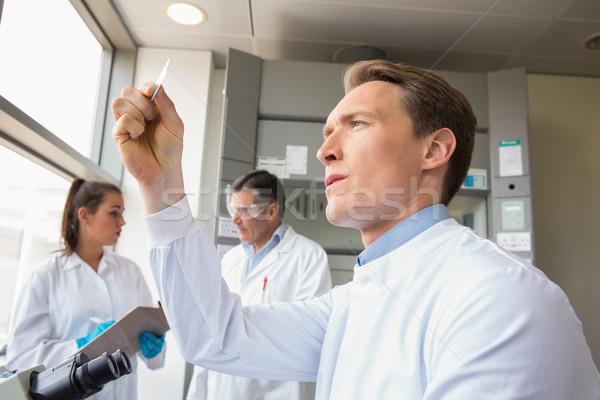 Wetenschapper naar test slide laboratorium school Stockfoto © wavebreak_media