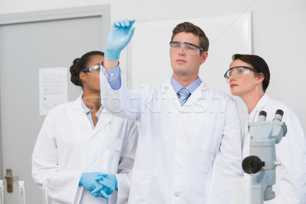 Concentrated scientists working together  Stock photo © wavebreak_media