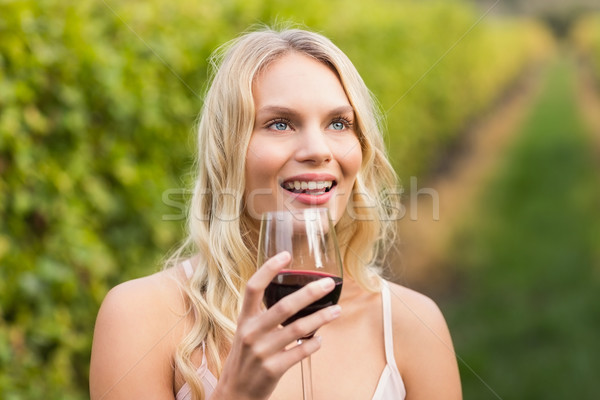 Young happy woman holding a glass of wine Stock photo © wavebreak_media