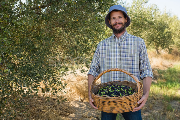 Landbouwer mand olijven boerderij portret Stockfoto © wavebreak_media