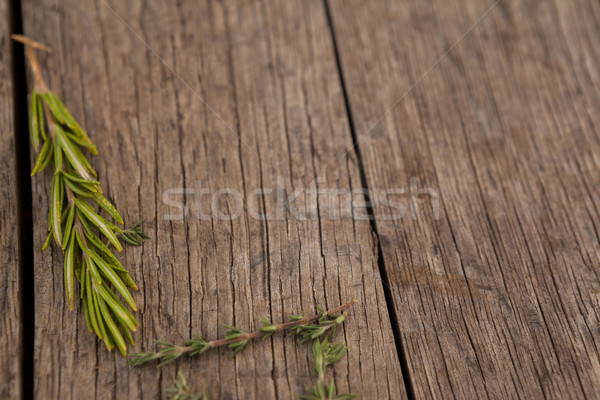 Close up of rosemary and thyme on table Stock photo © wavebreak_media