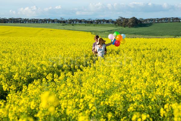 пару красочный шаров горчица области Сток-фото © wavebreak_media