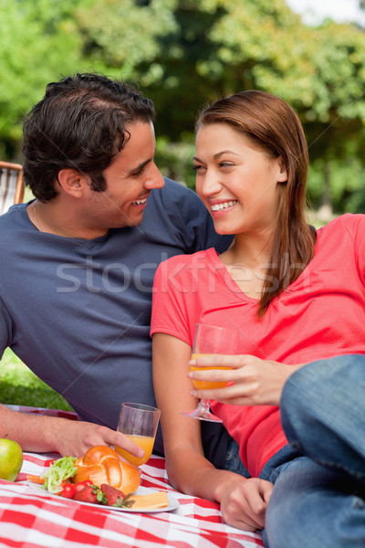 Two friends looking at each other while they hold glasses as they lie on a blanket with a picnic bas Stock photo © wavebreak_media