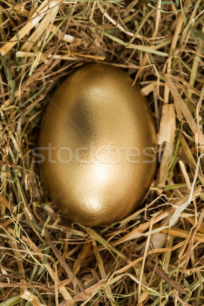 Goud ei stro kunst gezonde Stockfoto © wavebreak_media