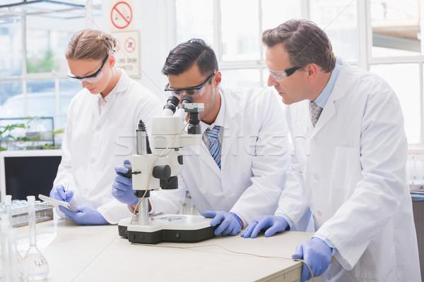 Wetenschappers onderzoeken iets microscoop laboratorium vrouw Stockfoto © wavebreak_media