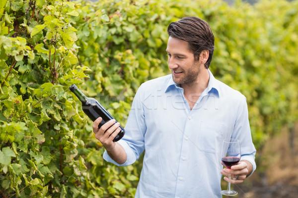 молодые счастливым человека глядя бутылку вина винограда Сток-фото © wavebreak_media