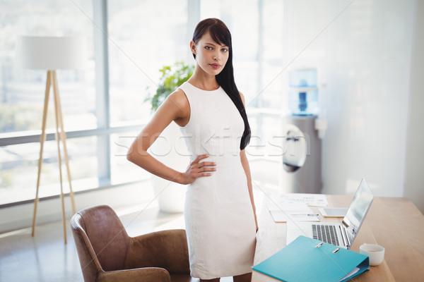 портрет исполнительного Постоянный столе служба синий Сток-фото © wavebreak_media
