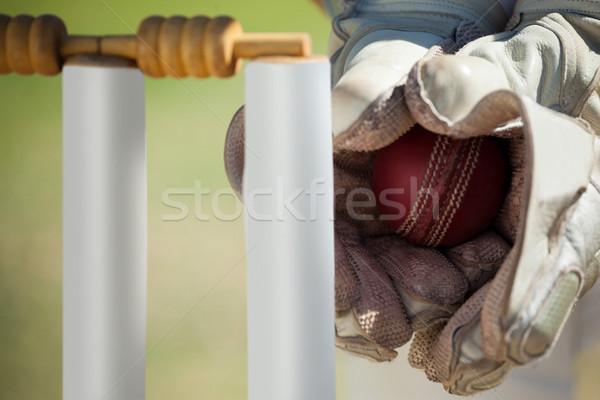 Hands of wicketkeeper catching ball behind stumps Stock photo © wavebreak_media