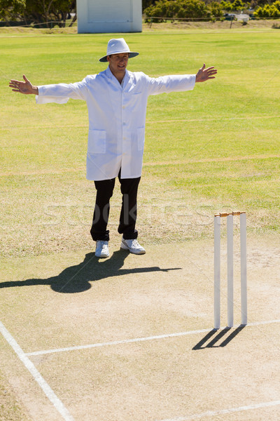 Cricket umpire signalling wide ball during match Stock photo © wavebreak_media