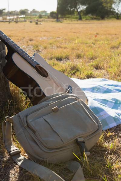 Gitaar zak picknickdeken park akoestische gitaar muziek Stockfoto © wavebreak_media